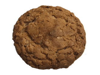 Oatmeal raisin cookie 90g